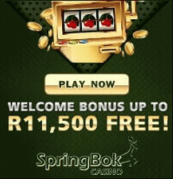 Spingbok Casino