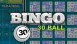 image of 30 ball online bingo